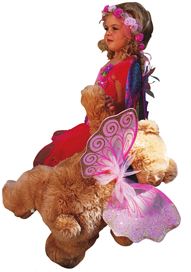 Teddy Bears' Picnic in Fairyland
